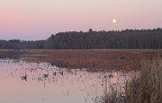 Concord Massachusetts Photo Posters - Moonrise over Waterfowl Pond Poster by John Burk