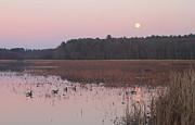 Moonrise Over Waterfowl Pond Print by John Burk