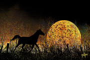 Photomanipulation Photo Prints - Moonrise Trot Print by Karen Slagle