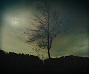 Photo Effects Prints - Moonspell Print by Bedros Awak