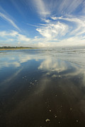 Moonstone Prints - Moonstone Beach Reflections Print by Mike  Dawson