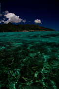 David Smith - Moorea Lagoon No 1