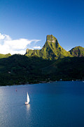 Moorea Framed Prints - Moorea Lagoon No 20 Framed Print by David Smith