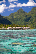 Polynesia Prints - Moorea Lagoon No 3 Print by David Smith