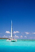Sailboat Ocean Posters - Moorea Lagoon No 4 Poster by David Smith
