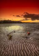 Nigel Hamer - Mooring Buoy Sunset