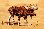 Canada Pyrography - Moose 2 by Ron Haist