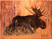 Paul K Hill - Moose at Rest