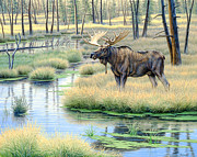 Moose Country Print by Paul Krapf