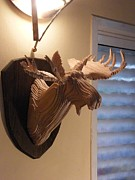 Layers Sculpturing Sculptures - Moose Head by Motti Inbar