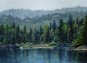 Trees Pastels - Moose Lake by Kathy Dolan