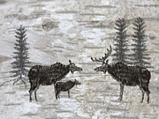 Chalk Drawing Metal Prints - Moose Meeting Metal Print by Jason Rizzo
