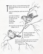 Scripture Drawings - More Important Than Birds by Meldra Driscoll
