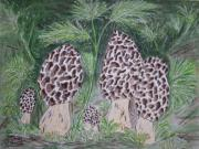 Kathy Marrs Chandler Art - Morel Mushrooms by Kathy Marrs Chandler