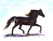 Black Stallion Paintings - Morgan Beauty by Leslie Allen