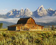 Gros Ventre Art - Mormon Row Barn by Kevin Pugh