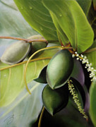 Morning Pastels - Morning Almonds Pastel by Ben Kotyuk