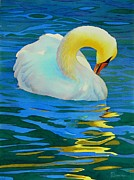 Swan Paintings - Morning Bath by Robert Hooper