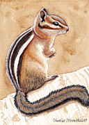 Heather Stinnett - Morning Coffee Chipmunk