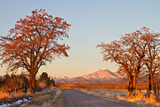Front Range Art - Morning Country Drive Longs Peak View by James Bo Insogna