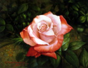 Dew Painting Posters - Morning dew on the rose faded Poster by Yoo Choong Yeul