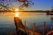 Emily Stauring - Morning Dock