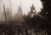 Dan Sproul - Morning Fog In The Smoky...
