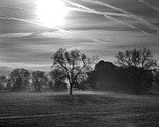 Holt Webb - Morning Fog One BW