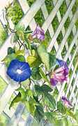Morning Glories Paintings - Morning glories by Terry Albert
