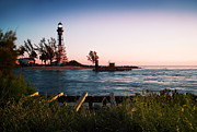 Hillsboro Prints - Morning Glory at Lighthouse Pt. Print by Thomas Levine