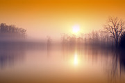 Indiana Photography Posters - Morning Glow Poster by Michael Huddleston