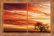Sunset Art Print Framed Prints - Morning Has Broken Barn Wood Picture Window View Framed Print by James Bo Insogna