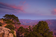 South Rim Framed Prints - Morning in the Canyon Framed Print by Andrew Soundarajan