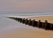 Lbi Prints - Morning Jetty Print by Mark Miller