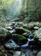 Gatlinburg Tennessee Prints - Morning Light 5 Print by Mel Steinhauer