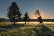 Clouds Photographs Posters - Morning Light in Yellowstone Poster by Sandra Bronstein