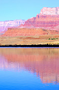 Cliff Lee Photo Posters - Morning Light - Vermillion Cliffs And Colorado River Poster by Douglas Taylor
