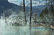 Western Photographs Prints - Morning Mist at Mammoth Hot Springs Print by Sandra Bronstein