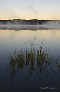 Chromatic Metal Prints - Morning Mist at Sunrise Metal Print by Dave Gordon