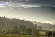 Smoky Mountains Posters - Morning Mist in the Smokies Poster by Andrew Soundarajan