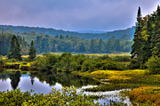 Adirondacks Photo Posters - Morning Mist on the Moose River Poster by David Patterson