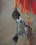 Hummingbird Pastels - Morning Nectar by Tracey Hunnewell