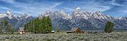 Sandra Bronstein Photo Posters - Morning on  Mormon Row - Grand Teton Poster by Sandra Bronstein