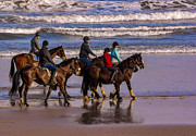 Horseriding Horse Riding Posters - Morning on The Beach Poster by Trevor Kersley