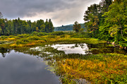 Fir Trees Photos - Morning on the Moose River - Old Forge New York by David Patterson