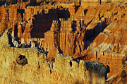 Tags Photos - Morning Oranges and Shadows in Bryce Canyon by Bruce Gourley