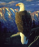 Eagle Painting Posters - Morning Quest Poster by Crista Forest