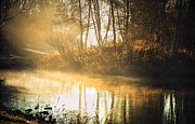Autumn Scene Prints - Morning Rays Print by Julie Palencia