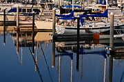 Photo-realism Photos - Morning Reflection in the Marina by David Wetzel