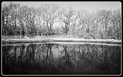 Tulsa Prints - Morning Reflections in Black and White Print by LaDonna Fisher-Hadley